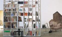 Bookshel_ Cappellini